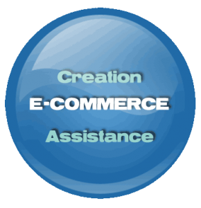 E-commerce Prestashop Probizz