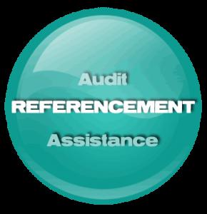 Audit référencement SEO Probizz